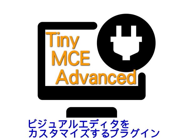 TinyMCEAdvanced記事画像